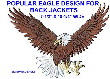 Eagle Patch Big Spread Eagle Patch